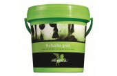 Parisol Hoof Grease Green